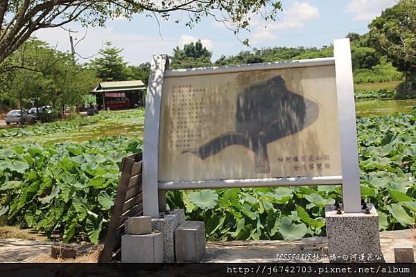 白河蓮花公園 (2)
