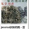 JESSICA雲嘉南趴趴造電子書櫃