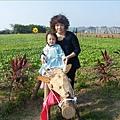2009.1.28年初三走馬瀨農場 (11)