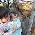 2009.1.28年初三走馬瀨農場 (35)