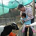 2009.1.28年初三走馬瀨農場 (42)