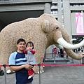 2009.2.28科博館看長毛象 (15)