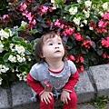 2009.2.28科博館植物園 (54)