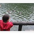 2009.2.16 長埤湖 (11)
