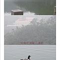 縮圖3梅花湖