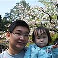 2009.3.21阿里山賞櫻 (55)