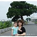三春老樹 (60)