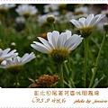 5. 9菁芳園 (26)