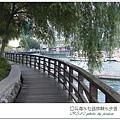 水社親水步道 (8)