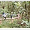 田中森林步道 (17)