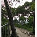 田中森林步道 (29)