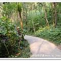 田中森林步道 (5)