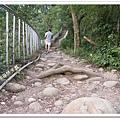 田中森林步道 (49)
