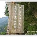 田中森林步道 (45)