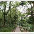 田中森林步道 (68)