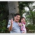 田中森林步道 (63)