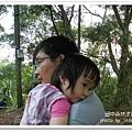 田中森林步道 (65)