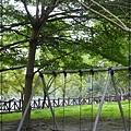 田中森林步道 (82)