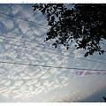 2009.5.31天空 (4)