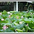 植物園 (75)