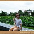 植物園 (78)