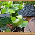 植物園 (83)