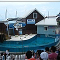 海洋公園 (180)