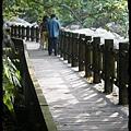 蓬萊溪護魚步道 (18)