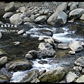 蓬萊溪護魚步道 (35)
