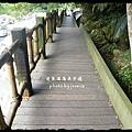 蓬萊溪護魚步道 (52)