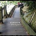 蓬萊溪護魚步道 (55)