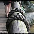 蓬萊溪護魚步道 (54)