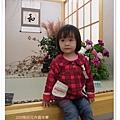 2009南投花卉嘉年華 (85)