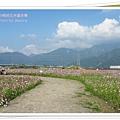 2009南投花卉嘉年華 (90)
