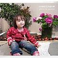 2009南投花卉嘉年華 (45)