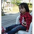2009南投花卉嘉年華 (193)