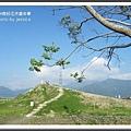 2009南投花卉嘉年華 (160)