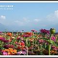 2009南投花卉嘉年華 (151)