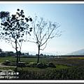 2009南投花卉嘉年華 (147)