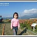 2009南投花卉嘉年華 (135)