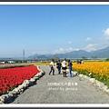 2009南投花卉嘉年華 (113)