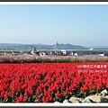 2009南投花卉嘉年華 (115)