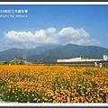 2009南投花卉嘉年華 (112)