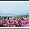 2009南投花卉嘉年華 (158)