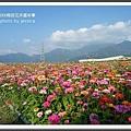 2009南投花卉嘉年華 (148)
