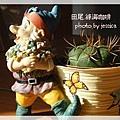 田尾綠海咖啡 (115)