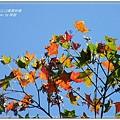 惠蓀林場 (253)
