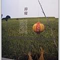 台中創意文化園區 (151)