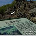 龍坑生態保護區 (119)