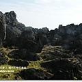 龍坑生態保護區 (159)